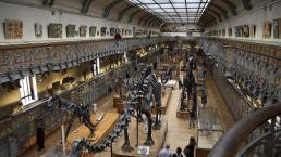 2018年近十亿人次走进博物馆